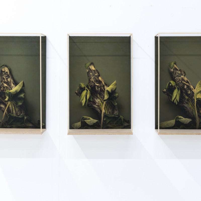 Priestor2, 3x 50x40cm, olej na plátne, 2018