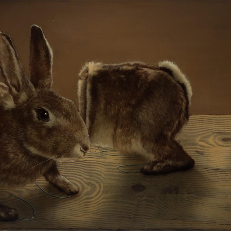 Zajac, 45x70cm, olejna plátne, 2016
