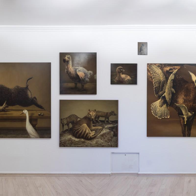 Temporal Limbo, Dot Gallery Bratislava, 2016