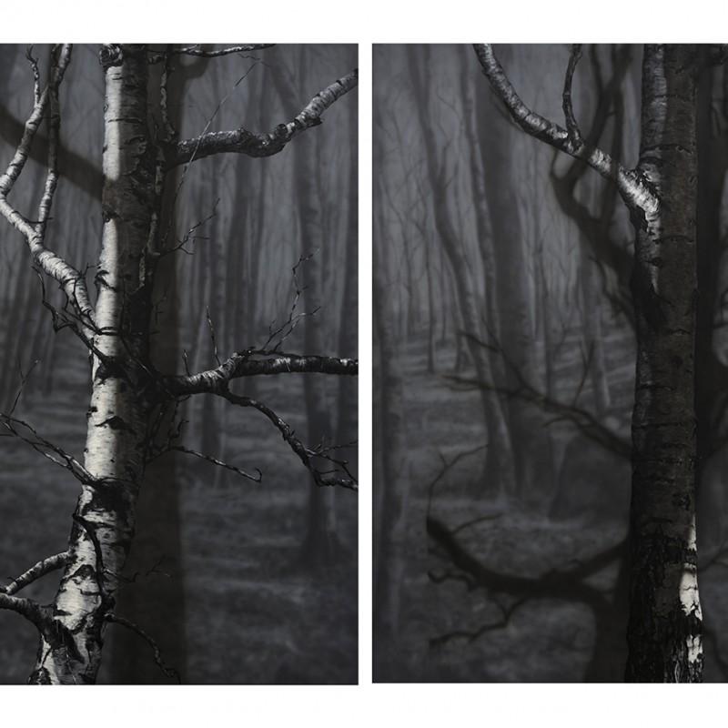 2x 240x190cm, olej a akryl na plátne, 2019